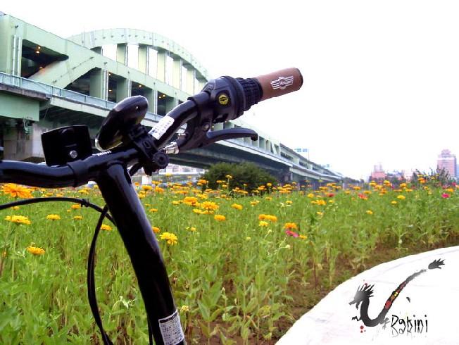 2008-09-09孔明車迎風觀山河濱公園11.JPG